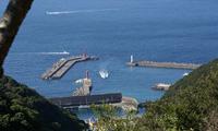 山から見た港